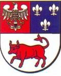 logo-turek